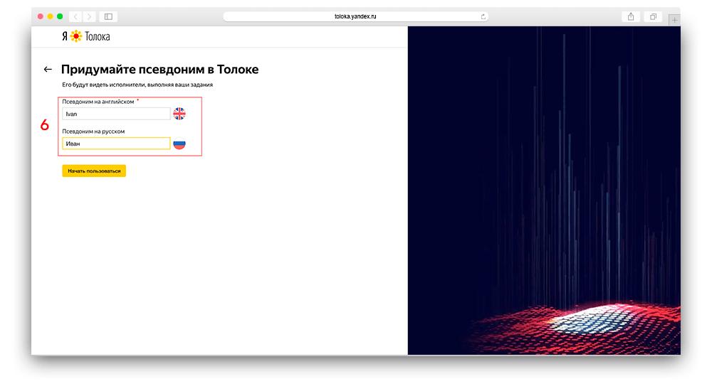 Скриншот регистрации в яндекс толока для заказчиков шаг 6
