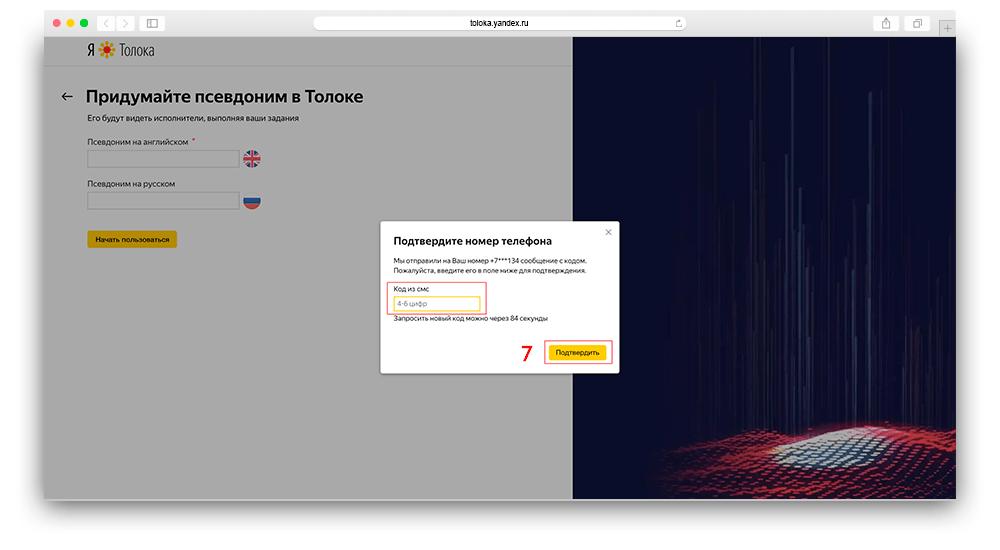 Скриншот регистрации в яндекс толока для заказчиков шаг 7